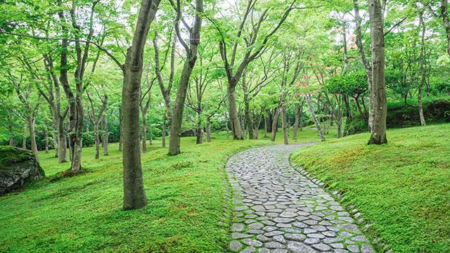 箱根美術館 日本庭園