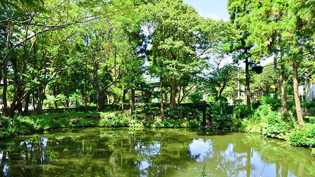 円覚寺 白鷺池(鎌倉)