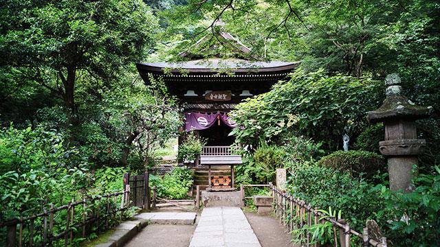 円覚寺 黄梅院(鎌倉)