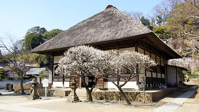 円覚寺 選仏場(鎌倉)