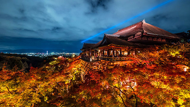 清水寺 本堂のライトアップ(京都)