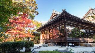 京都 天授庵CMで知名度が上がった紅葉の名所