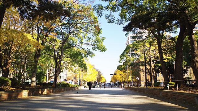 横浜公園(馬車道・関内)