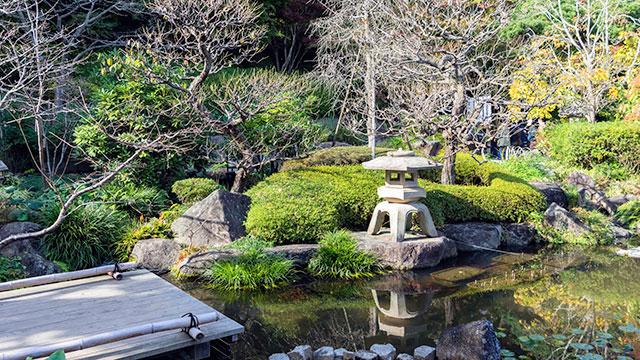 庭園(鎌倉長谷寺)