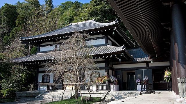 観音ミュージアム(鎌倉長谷寺)