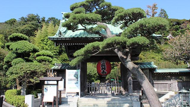 山門(鎌倉長谷寺)