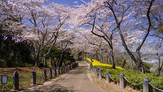 衣笠山公園(横須賀)