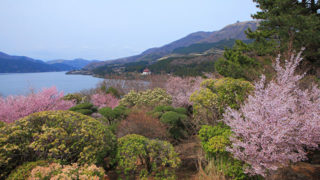 名園 恩賜箱根公園離宮跡地に造られた風光明媚な名園