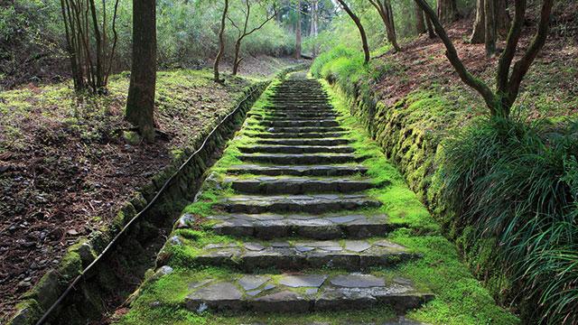 二百階段(恩賜箱根公園)