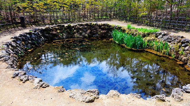 銚子池(忍野八海)