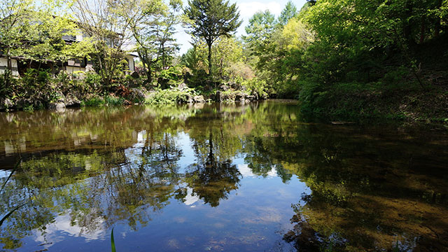 出口池(忍野八海)