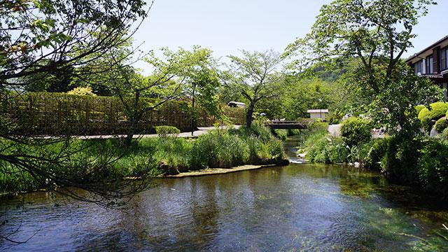 濁池(忍野八海)