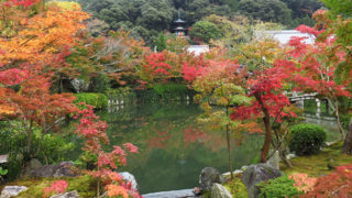京都 永観堂(禅林寺)もみじの永観堂の別名を持つ紅葉の名所