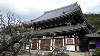 京都 光雲寺名庭師が手がけた庭園が残る寺院