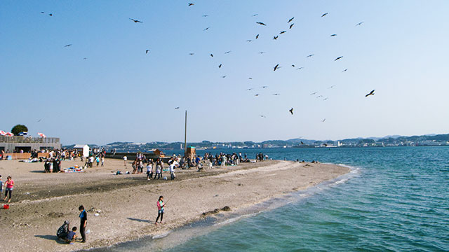 砂浜(猿島)