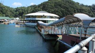 下田海中水族館イルカと一緒に泳ぐことができる水族館
