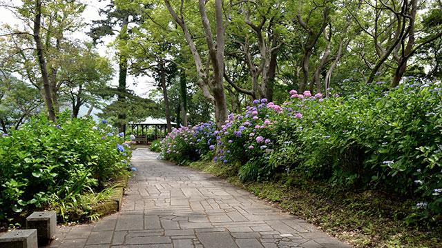 下田公園(下田・南伊豆)