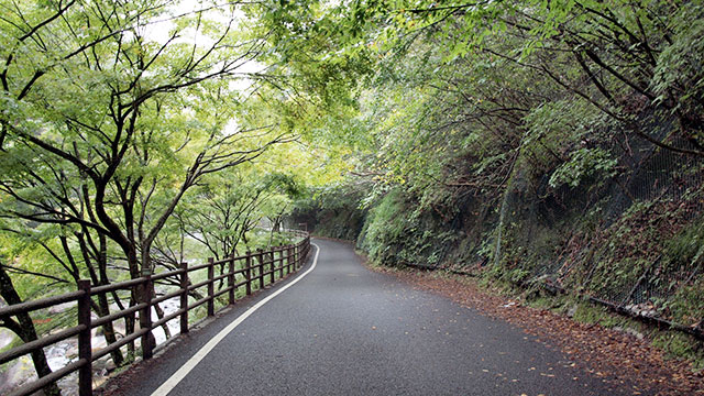 渓谷沿いの道(昇仙峡)
