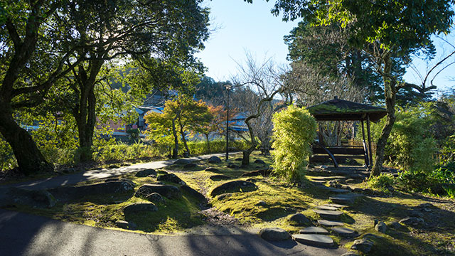 赤蛙公園(修善寺)