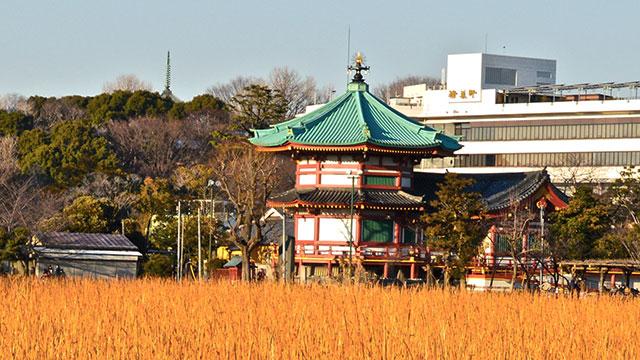 寛永寺弁天堂(上野公園)