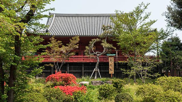 寛永寺清水観音堂(上野公園)