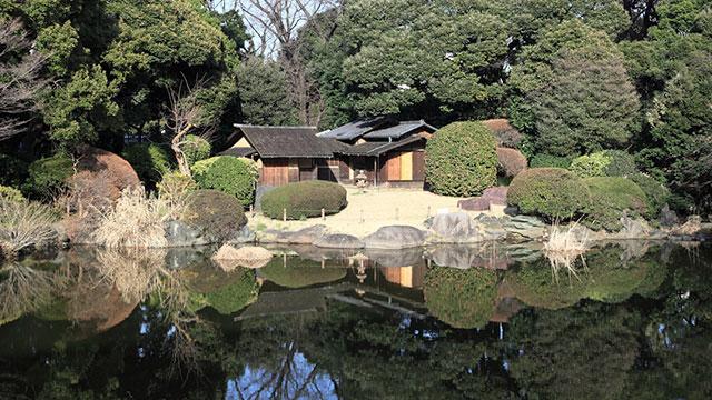 東京国立博物館の庭園(上野公園)