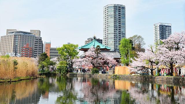 上野公園・上野観光》の魅力と名...