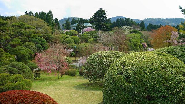 恩賜箱根公園(芦ノ湖・元箱根・箱根町)