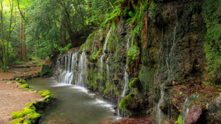 千条の滝山筋を流れる美しい滝へ癒しハイキング