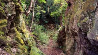 大仏切通古道の面影を強く残す山の道