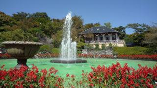 箱根強羅公園100年以上の歴史を持つ公園の魅力と楽しみ方