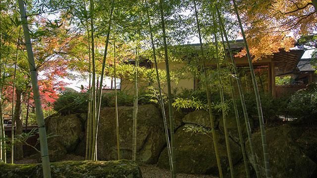 竹庭(箱根美術館)