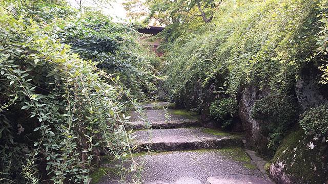 萩の道(箱根美術館)