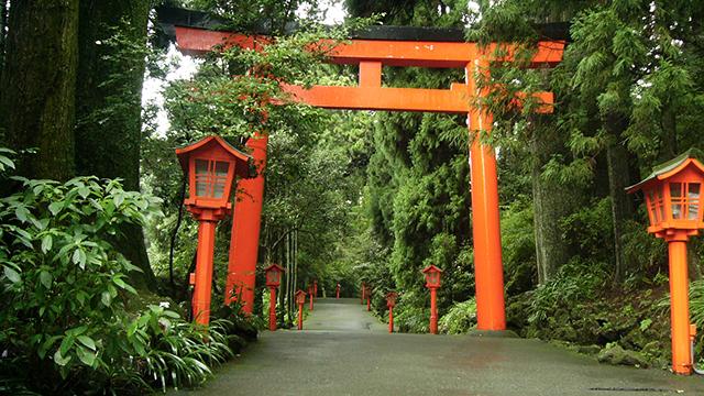 参道に立つ鳥居(箱根神社)