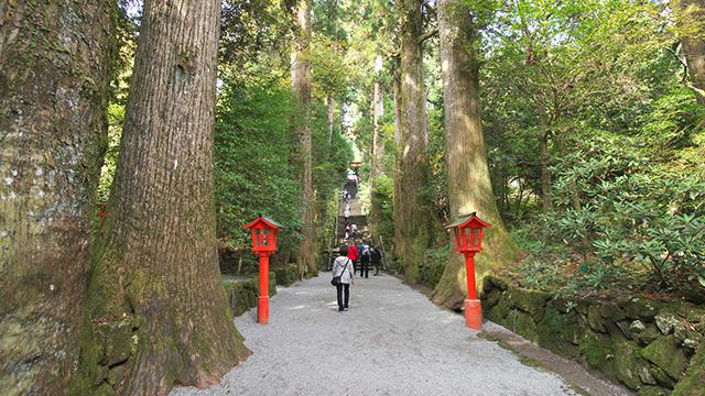 参道(箱根神社)