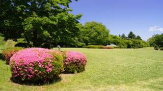 石垣山一夜城歴史公園小田原の街並みが一望できる城址公園