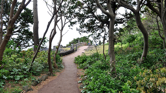 自然研究路(城ヶ崎海岸)