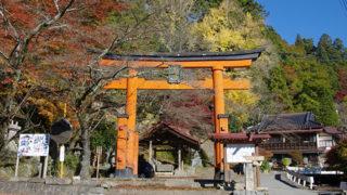甲府 金櫻神社金運アップのご利益篤い桜の名所
