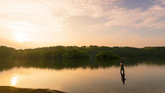 釣り人(一碧湖)