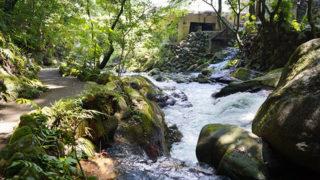 湯河原 万葉公園植物と足湯が楽しめる癒しの場所