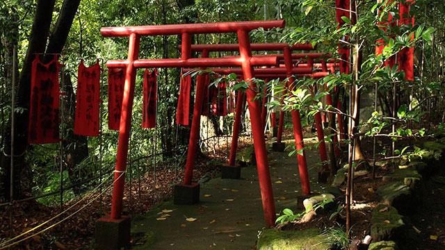 湯権現熊野神社の鳥居(万葉公園)