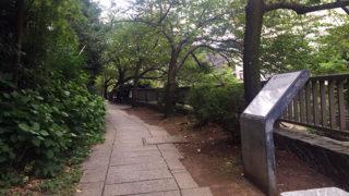 松川遊歩道ゆっくりと歩きたい温泉街の散歩道