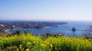 寝姿山自然公園四季の花々と絶景が楽しめる人気観光スポット