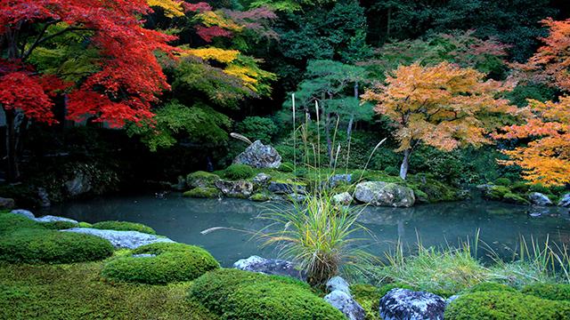 庭園(南禅院)