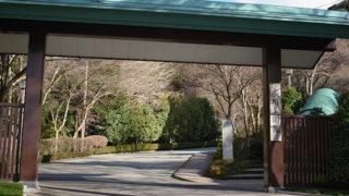 成川美術館一幅の絵画のような眺望と日本画の魅力に出合う