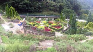 熱海 アカオ ハーブ&ローズガーデン20万坪の敷地に広がる花とハーブの楽園