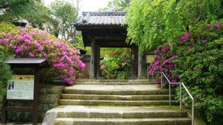 鎌倉 安国論寺日蓮が立正安国論を著した花が美しい寺院