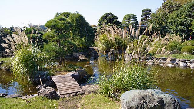 吹合の庭(フラワーセンター大船植物園)