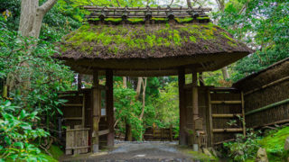 京都 祇王寺苔と紅葉が美しい悲恋の尼寺