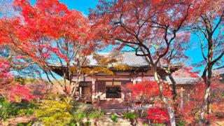 京都 宝筐院紅葉が美しさで名高い嵯峨野の古刹